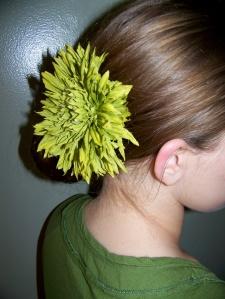 hairbarrettemodel